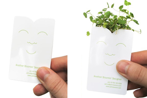 sprout_cards